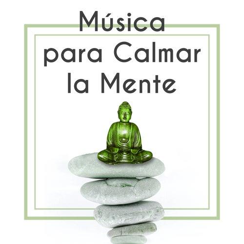 Música para Calmar la Mente – Música y Sonidos Pacíficos de la Naturaleza Relajante, Canciones para Meditación, Limpiar la Mente de Meditação e Espiritualidade Musica Academia
