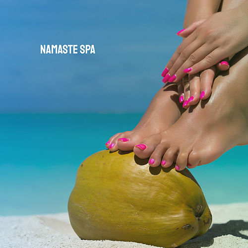 Namaste SPA by Various Artists