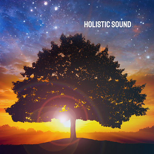 Holistic Sound by Various Artists
