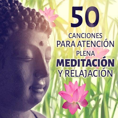 50 Canciones para Atención Plena Meditación y Relajación: Música Serenidad para el Meditación, Yoga, Spa y Masajes, Sonidos Zen Relajante, Pensamiento Positivo & Dulces Sueños de Various Artists