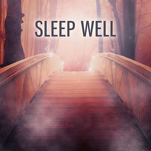 Sleep Well – Beautiful Relaxing Music for Easy Sleep, Calming Sounds of Nature, New Age Ambient for Deep Sleep de Ocean Waves For Sleep (1)
