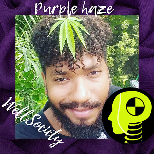 Purple Haze by WellSociety