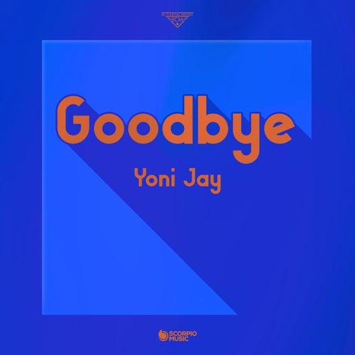 Goodbye by Yoni Jay