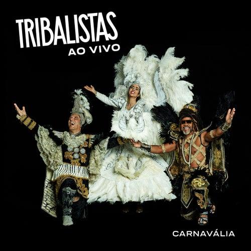 Carnavália (Ao Vivo) by Tribalistas