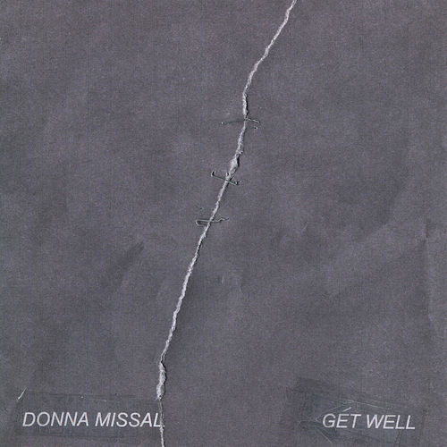 Get Well by Donna Missal