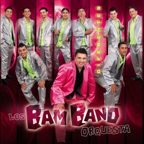 Diferentes de Los Bam Band Orquesta