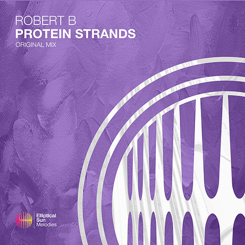 Protein Strands by Robert B