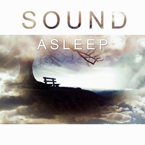 Sound Asleep - Lullaby for Deep Sleep, Listen Silence, New Age Music for Sleep by White Noise