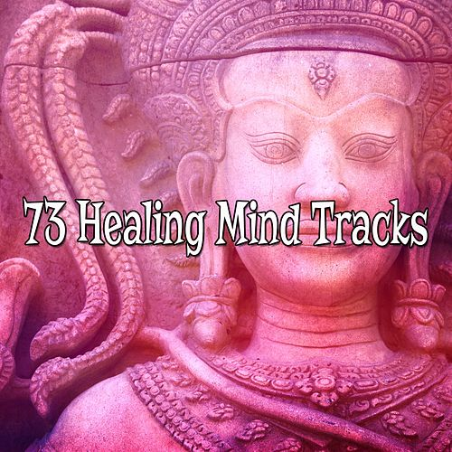 73 Healing Mind Tracks de Study Concentration