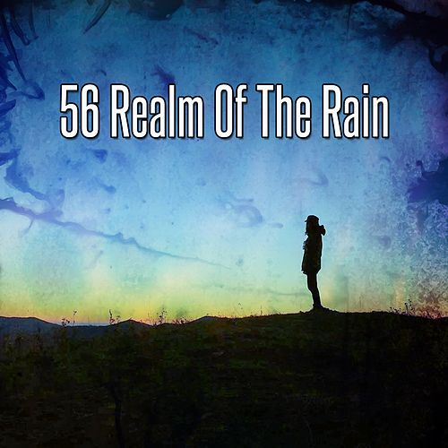 56 Realm Of The Rain de Zen Meditate