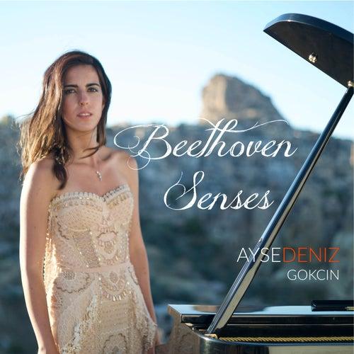Beethoven Senses von Aysedeniz Gokcin