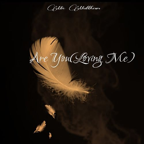 Are You(Loving Me) by Mic Matthews