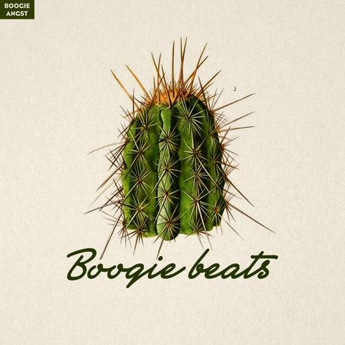Boogie Beats von Various Artists