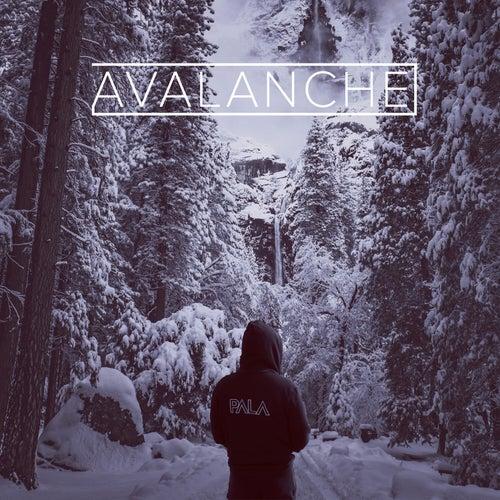 Avalanche de Pala