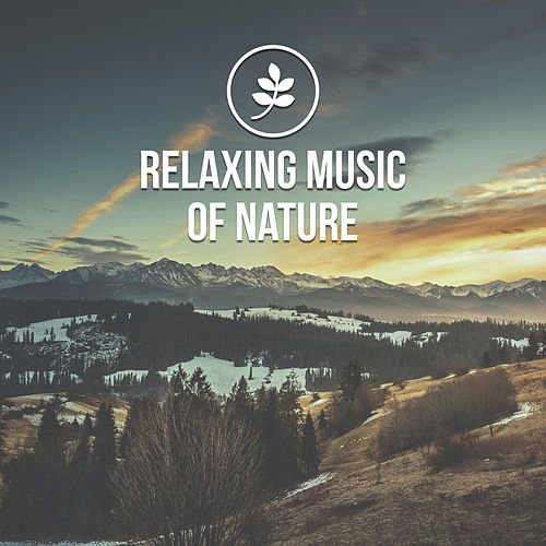 Relaxing Music of Nature – Fabulous New Age Music Therapy, Relaxing Sounds, Gentle Nature, Relaxing Music, Nature Sounds, Feel Better with Positive Sounds of Nature by New Age
