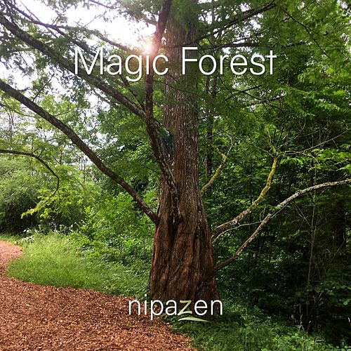 Magic Forest by Nipazen