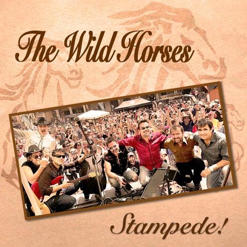 Stampede de Wild Horses