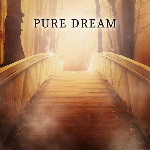 Pure Dream - Listen Silence, Evening Shadow, Relax and Sleep, Calm Lullabies for Sleeping by Sleep Sound Library