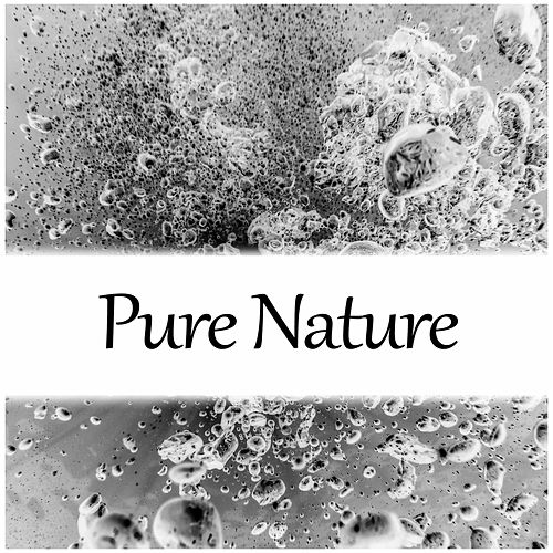 Pure Nature - Nature Meditation, Touch of Nature, Relaxing Ambient de Nature Sounds Artists