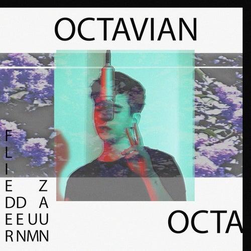 Zaun um den Flieder de Octavian
