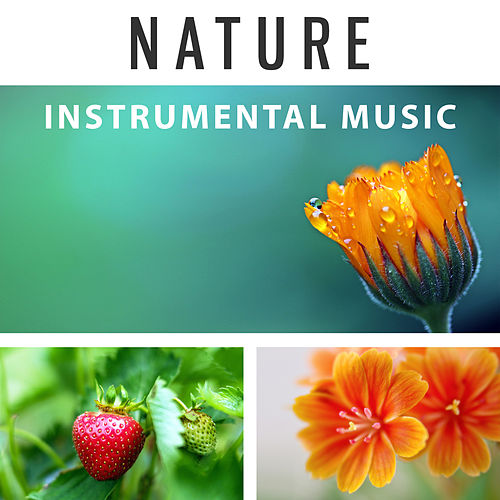 Nature Instrumental Music – Calm Music, Ambient New Age Music for Meditation, Massage, Yoga, Spa, Relaxation, Inner Peace by Nature Sounds Relaxation: Music for Sleep, Meditation, Massage Therapy, Spa