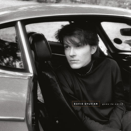 Gone To Earth (Remastered 2003) by David Sylvian