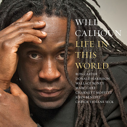 Life in This World by Will Calhoun