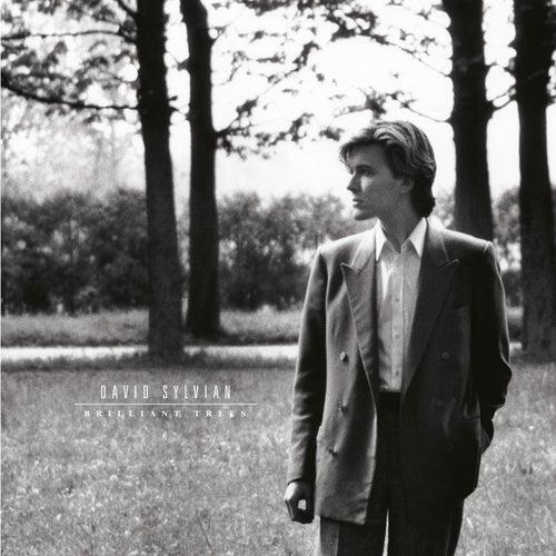Brilliant Trees (Remastered 2003) by David Sylvian