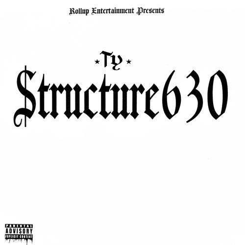 Structure630 de TY