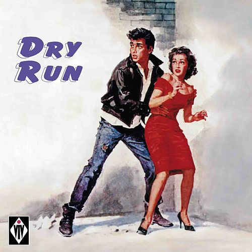 Dry Run de Various Artists