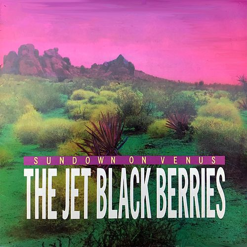 Sundown on Venus de Jet Black Berries