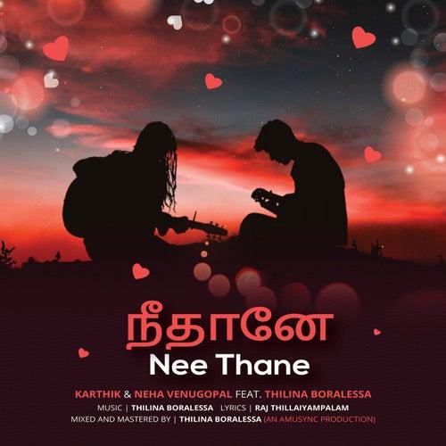 Nee Thane de Karthik