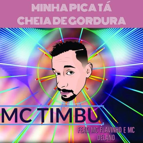 Minha Pica Tá Cheia de Gordura by MC Timbu