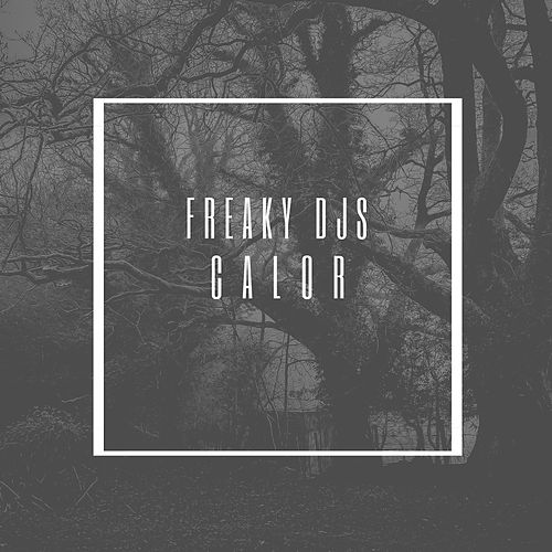 Calor by Freaky DJ's