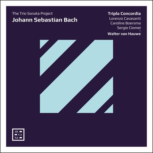 Bach: The Trio Sonata Project de Walter van Hauwe