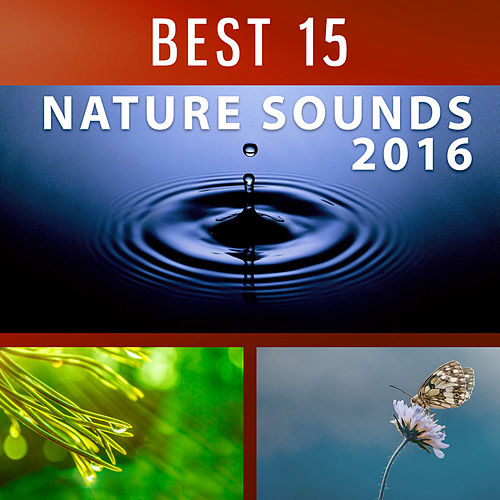 Best 15 Nature Sounds 2016 – Wonderful Nature Sounds of Birds and Ocean Waves, Relaxing Music Therapy, Spa Music, Massage Music, Relaxation Music by Relaxing Rain Sounds