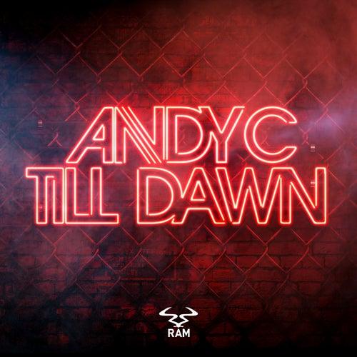 Till Dawn de Andy C