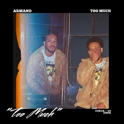 Too Much de Armand