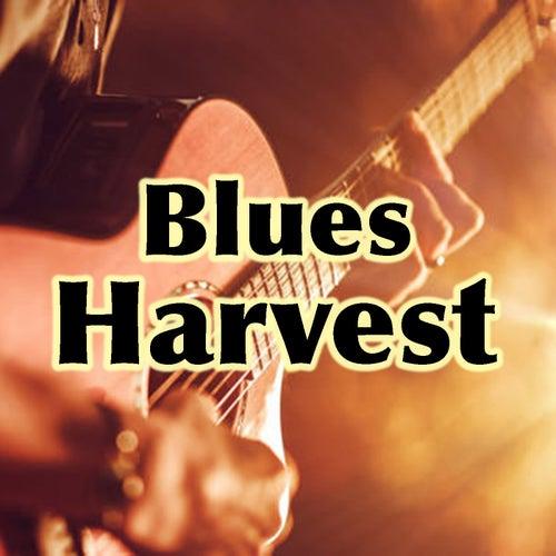 Blues Harvest de Various Artists