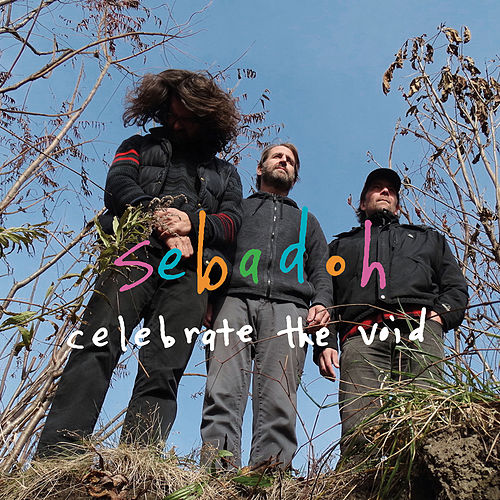 Celebrate The Void by Sebadoh