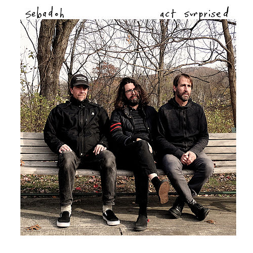 Act Surprised by Sebadoh