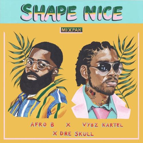 Shape Nice de Afrob