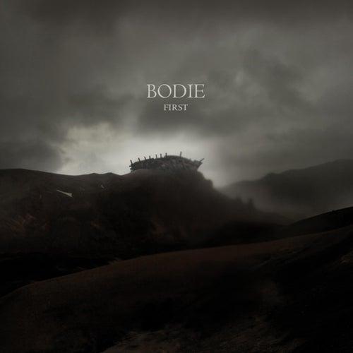 First de Bodie