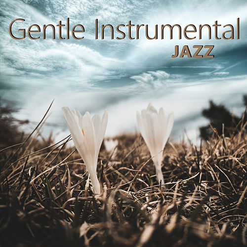 Gentle Instrumental Jazz de The Jazz Instrumentals
