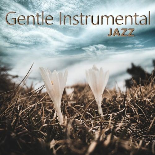 Gentle Instrumental Jazz de The Jazz Instrumentals