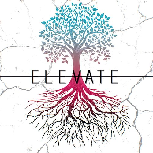 Elevate von Breaking the Cycle