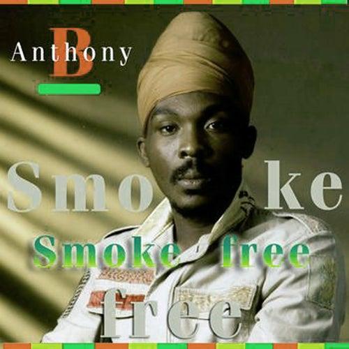 Smoke Free von Anthony B