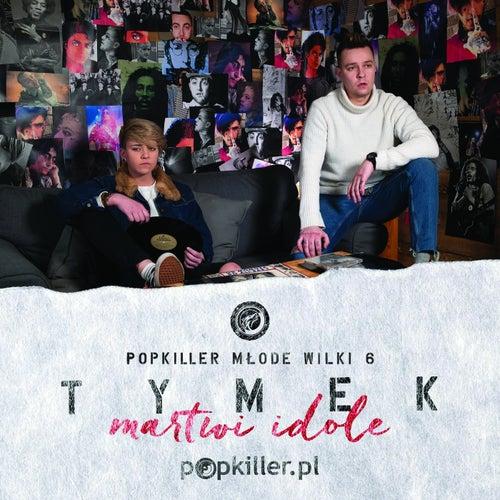Martwi Idole (Single Edit) by Tymek
