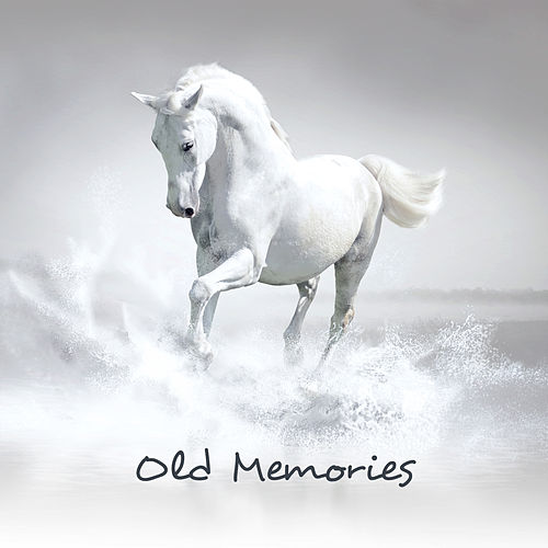 Old Memories: Instrumental Covers All the Time de Various Artists