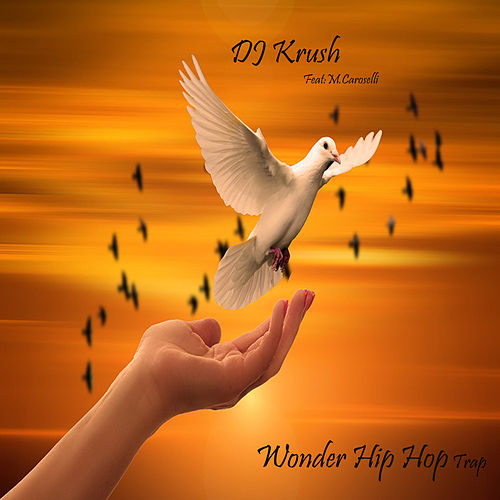 Wonder Hip Hop Trap de Dj Krush